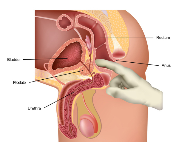 Prostate stimulation with finger